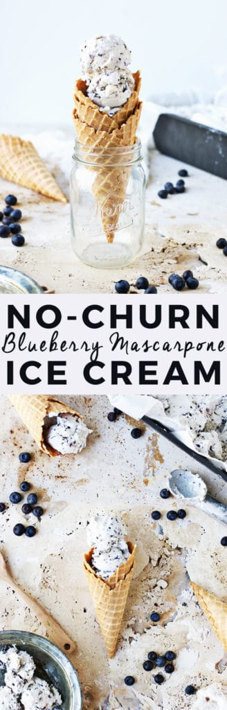 No-Churn Blueberry Mascarpone Ice Cream   The Butter Half